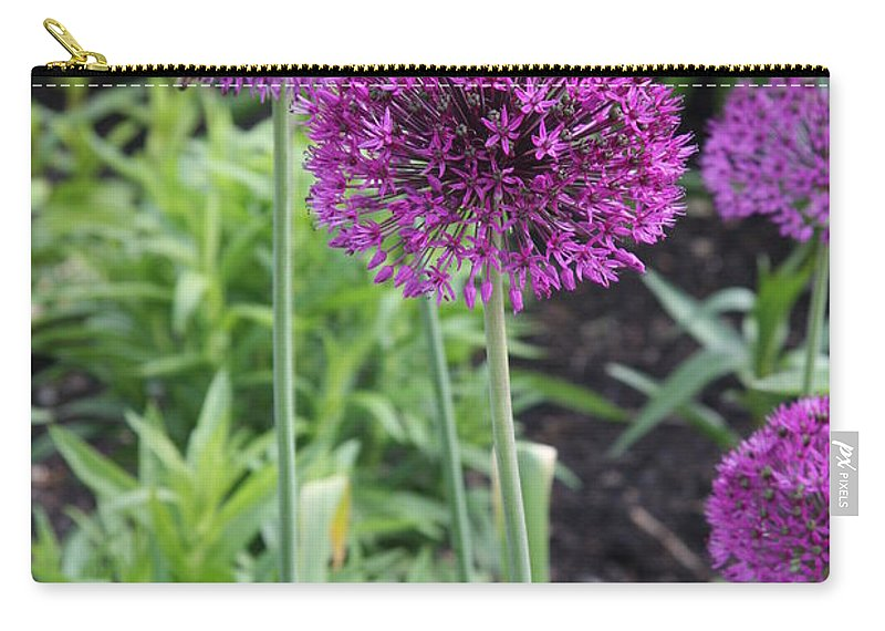 Flowers Carry-all Pouch featuring the photograph Ornamental Leek Flower by Christiane Schulze Art And Photography
