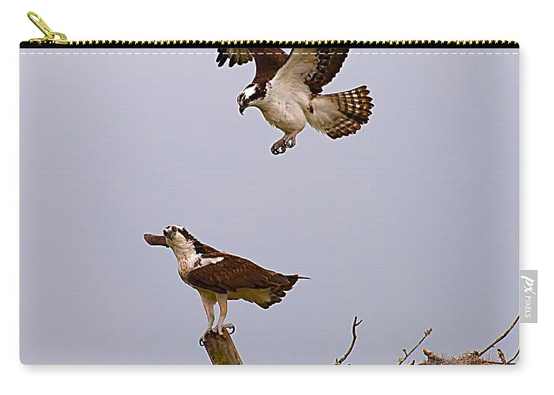 Osprey Carry-all Pouch featuring the photograph Osprey Coming In by Photos By Cassandra