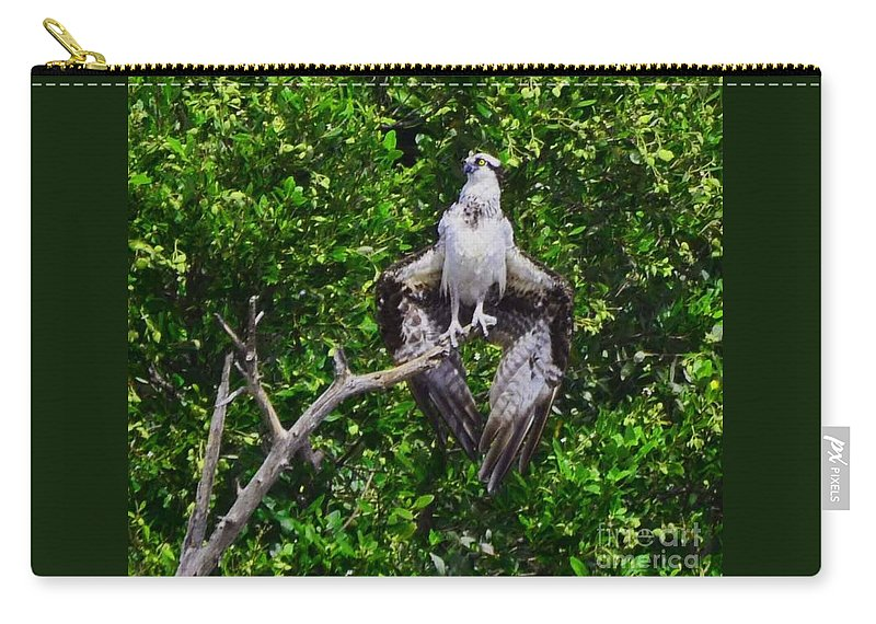 Big Birds Carry-all Pouch featuring the photograph Osprey by Judy Wolinsky