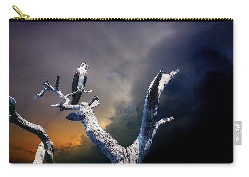 Osprey Carry-all Pouch featuring the photograph Osprey by Mal Bray