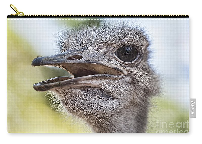 Ostrich Carry-all Pouch featuring the photograph Ostrich Bokeh V2 by Douglas Barnard
