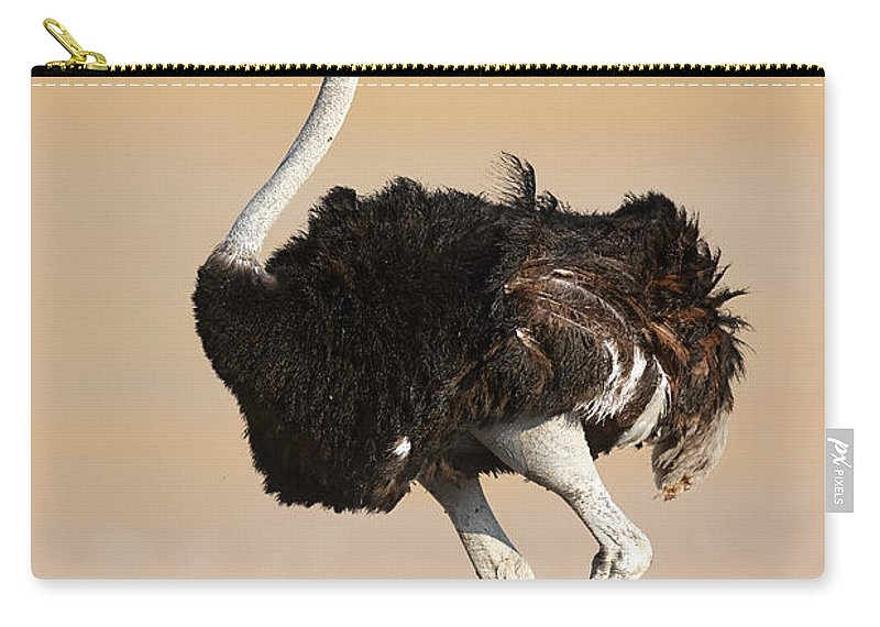 Wild Carry-all Pouch featuring the photograph Ostrich by Johan Swanepoel