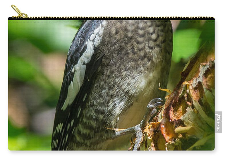 Bird Carry-all Pouch featuring the photograph Our Poor Birch by Richard Kitchen