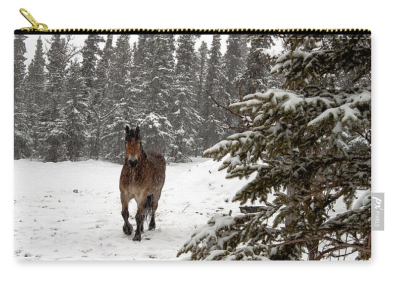 Horse Carry-all Pouch featuring the photograph Out For A Walk by Thomas Sellberg