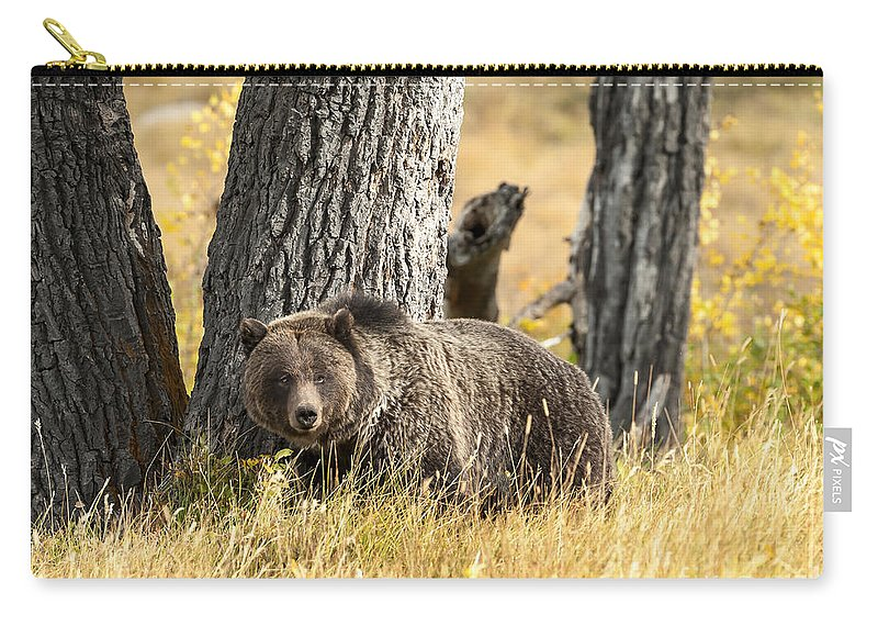 Wildlife Carry-all Pouch featuring the photograph Out For Lunch by Sandra Bronstein