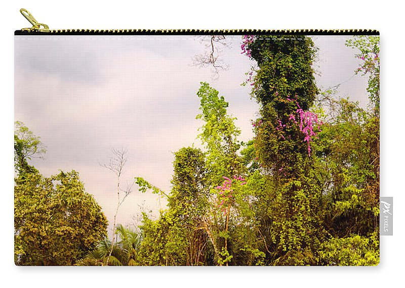 Rainforest Carry-all Pouch featuring the photograph Out Of The Jungle by Alexey Stiop