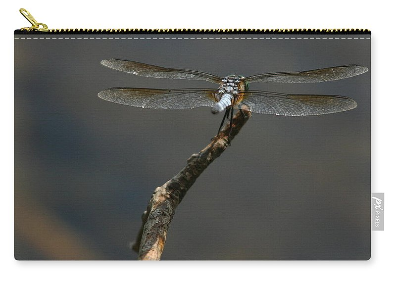 Nature Carry-all Pouch featuring the photograph Out On A Limb by Karol Livote