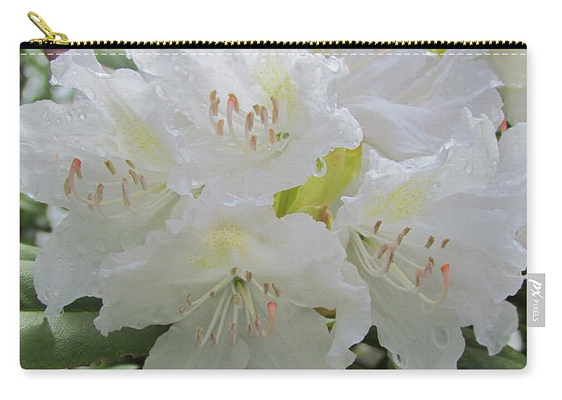 Rhododendron Carry-all Pouch featuring the photograph Outstanding by Elizabeth Dow