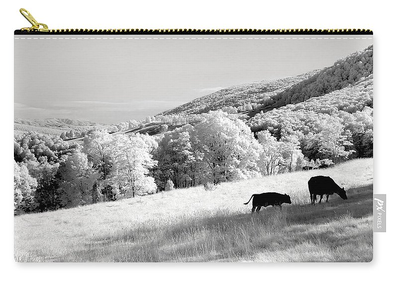 Black And White Carry-all Pouch featuring the photograph Overlooked by John Cardamone