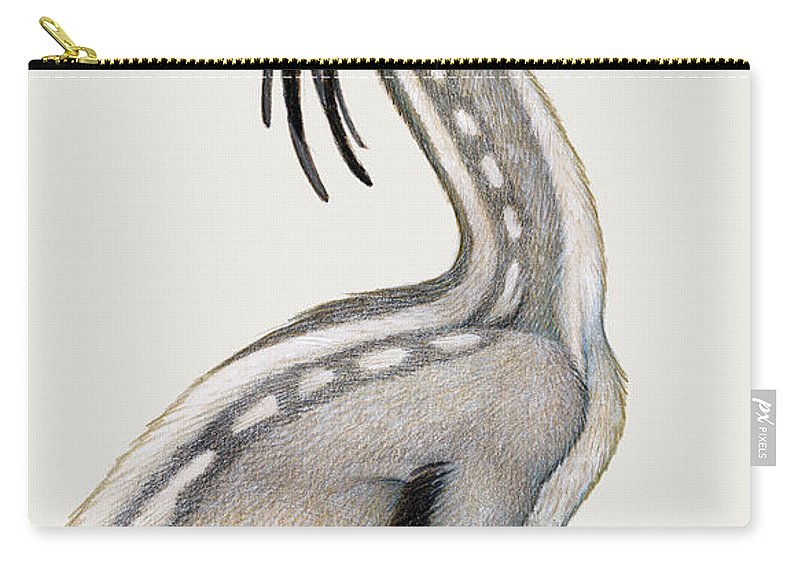 Illustration Technique Carry-all Pouch featuring the digital art Oviraptor, A Small Dinosaur That Lived by H. Kyoht Luterman