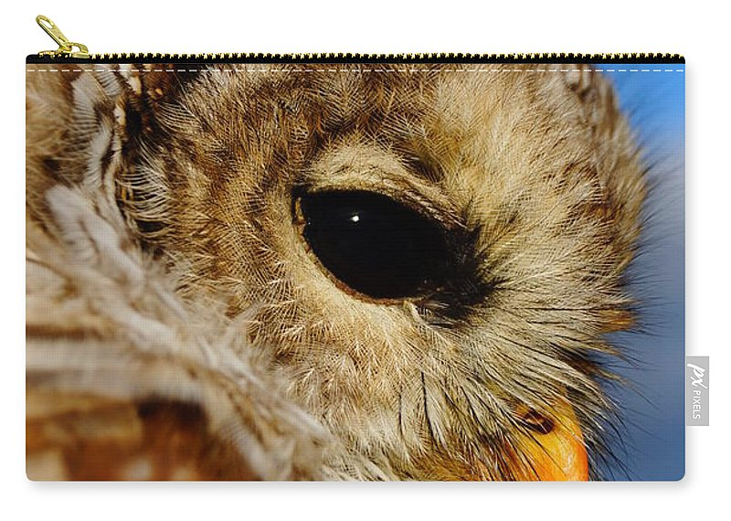 Owl Carry-all Pouch featuring the photograph Owl by Jeffery L Bowers