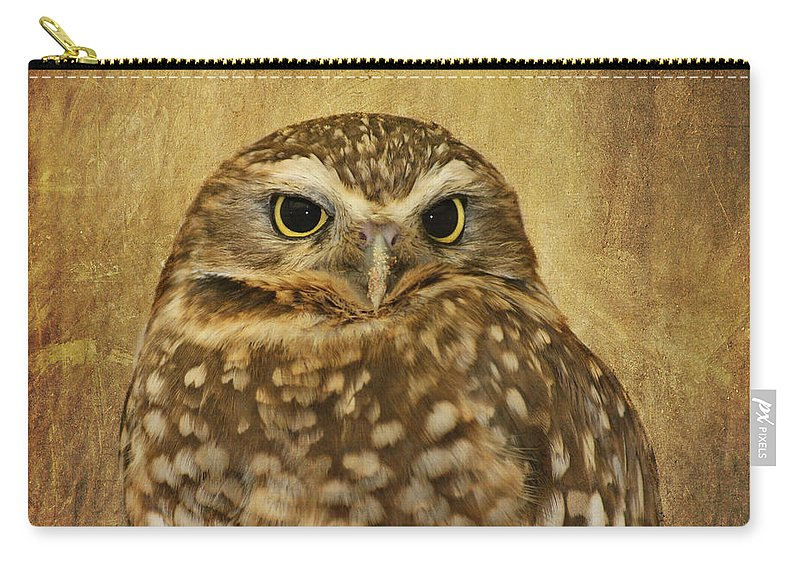 Owl Carry-all Pouch featuring the photograph Owl by Kim Hojnacki