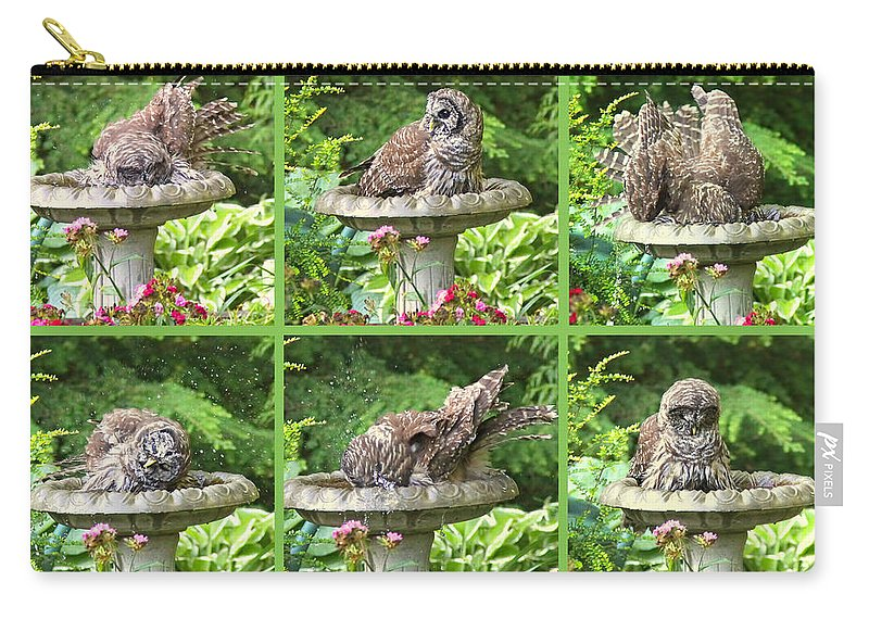 Owl Carry-all Pouch featuring the photograph Owls Do Take Baths by Jennie Marie Schell
