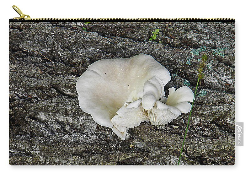 Oyster Carry-all Pouch featuring the photograph Oyster Mushroom by Nick Kirby