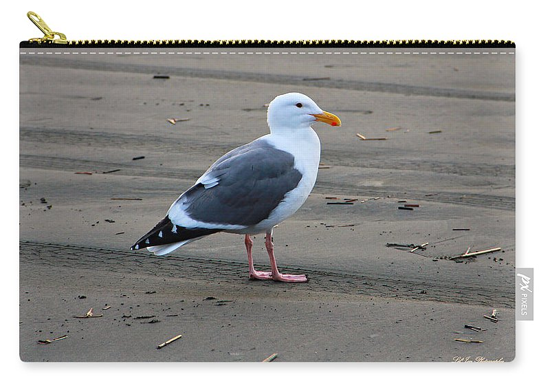 Ocean Carry-all Pouch featuring the photograph Pacific Seagull by Jeanette C Landstrom
