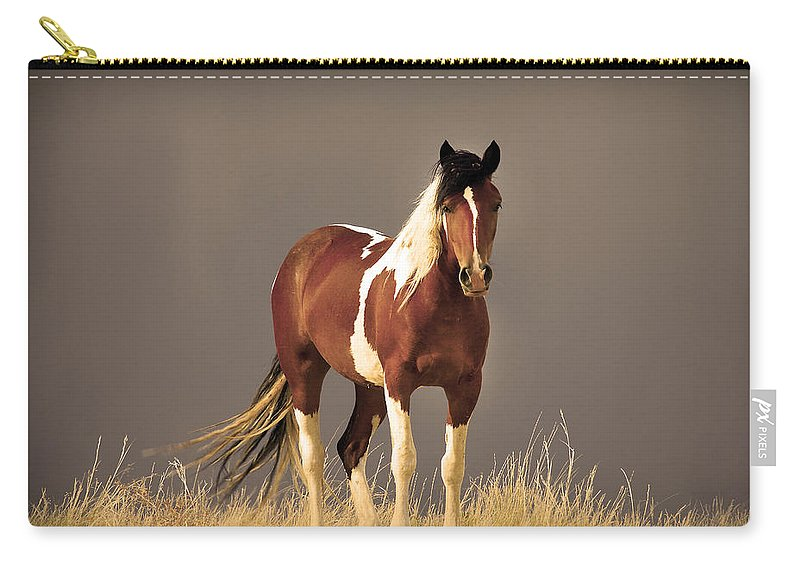 Wild Mustangs Carry-all Pouch featuring the photograph Paint Filly Wild Mustang Sepia Sky by Rich Franco