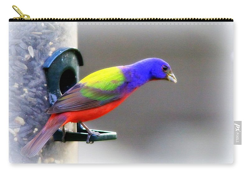 Bird Carry-all Pouch featuring the photograph Painted Bunting - Img 9755-004 by Travis Truelove