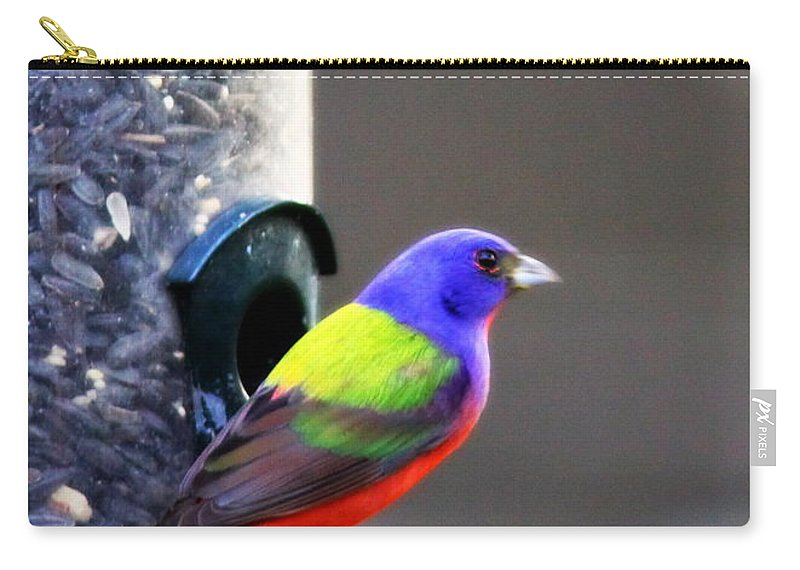 Bird Carry-all Pouch featuring the photograph Painted Bunting - Img 9757-002 by Travis Truelove