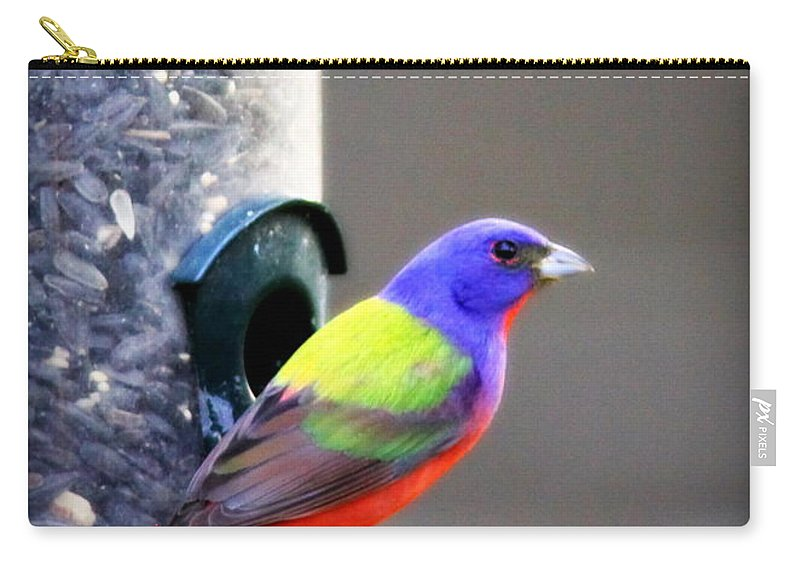 Bird Carry-all Pouch featuring the photograph Painted Bunting - Img_9756-004 by Travis Truelove