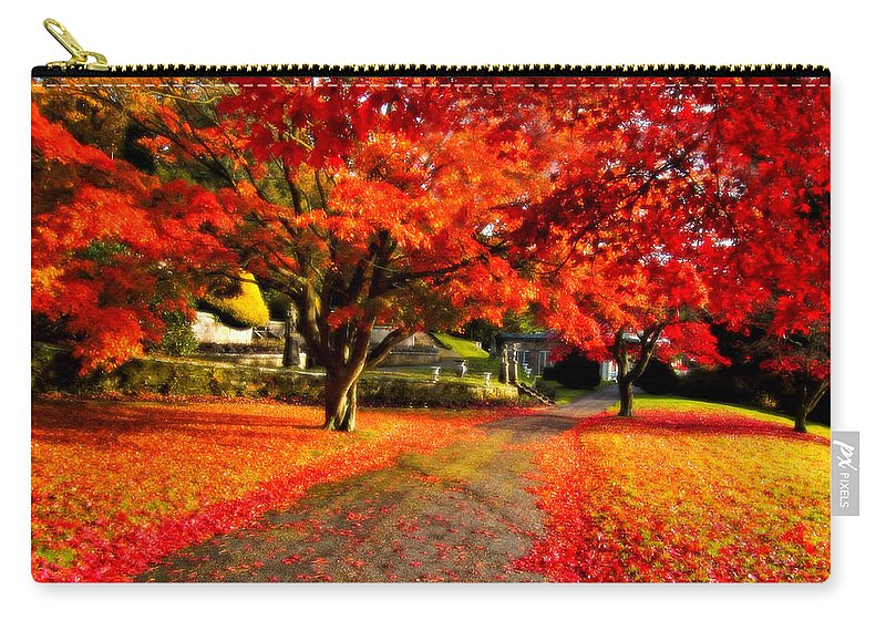 Maple Carry-all Pouch featuring the photograph Painterly Autumn Path by Beverly Cash