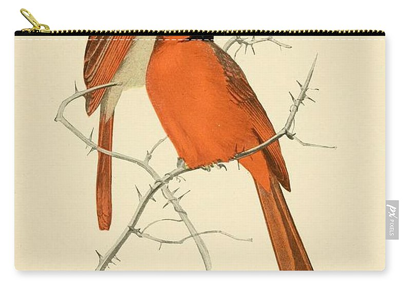 Cardinals Carry-all Pouch featuring the painting Pair Of Cardinals by Philip Ralley