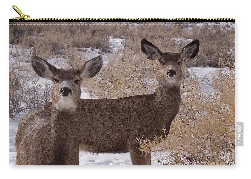 Deer Carry-all Pouch featuring the photograph Pair Of Mule Deer  #7584 by J L Woody Wooden