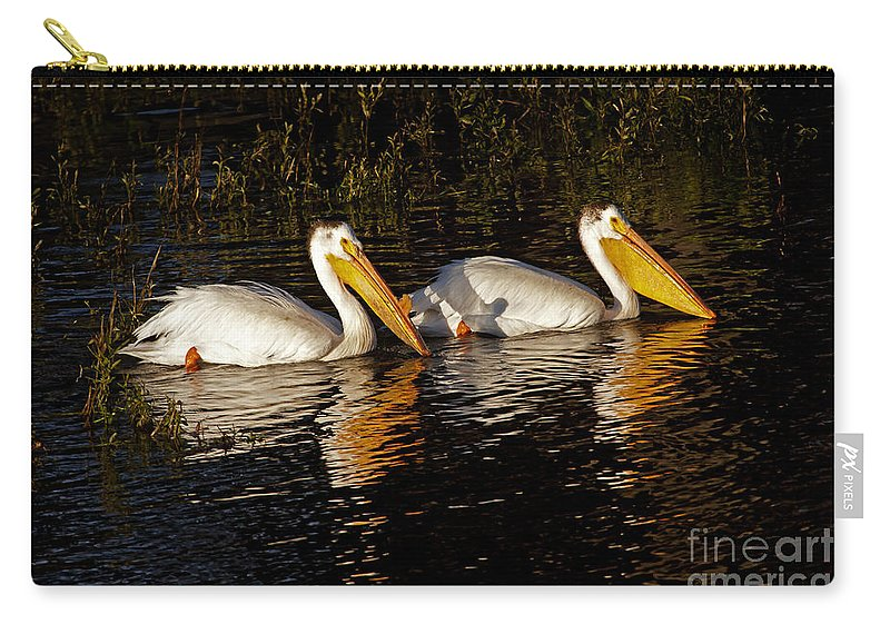 Bird Carry-all Pouch featuring the photograph Pair Of Pelicans  #6935 by J L Woody Wooden