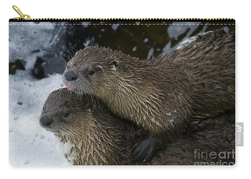 Otter Carry-all Pouch featuring the photograph Pair Of River Otters  #1301 by J L Woody Wooden