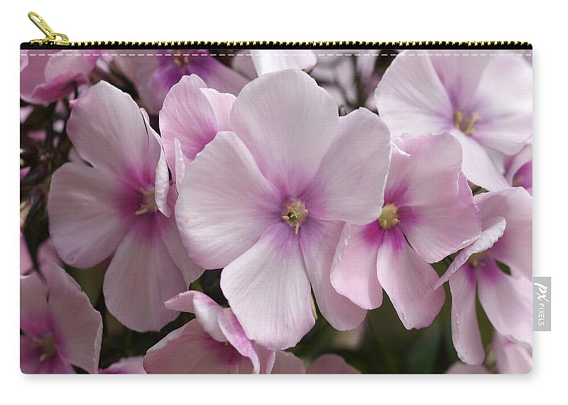 Pink Carry-all Pouch featuring the photograph Pale Pink 3 by Carol Lynch