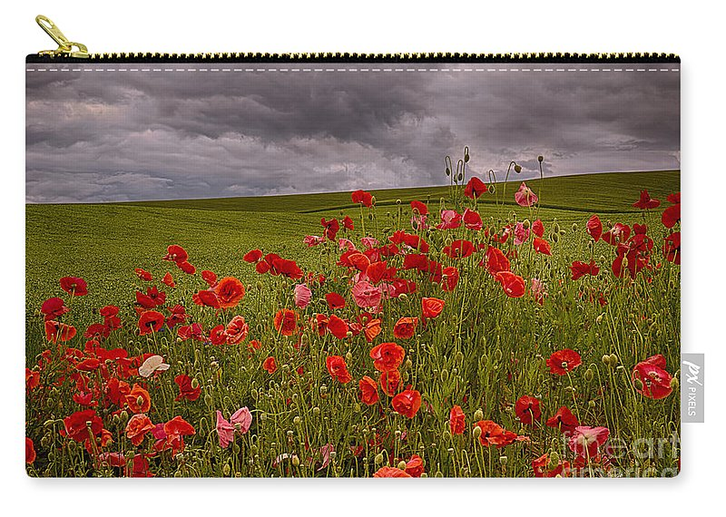 Poppies Carry-all Pouch featuring the photograph Palouse Poppies by Priscilla Burgers