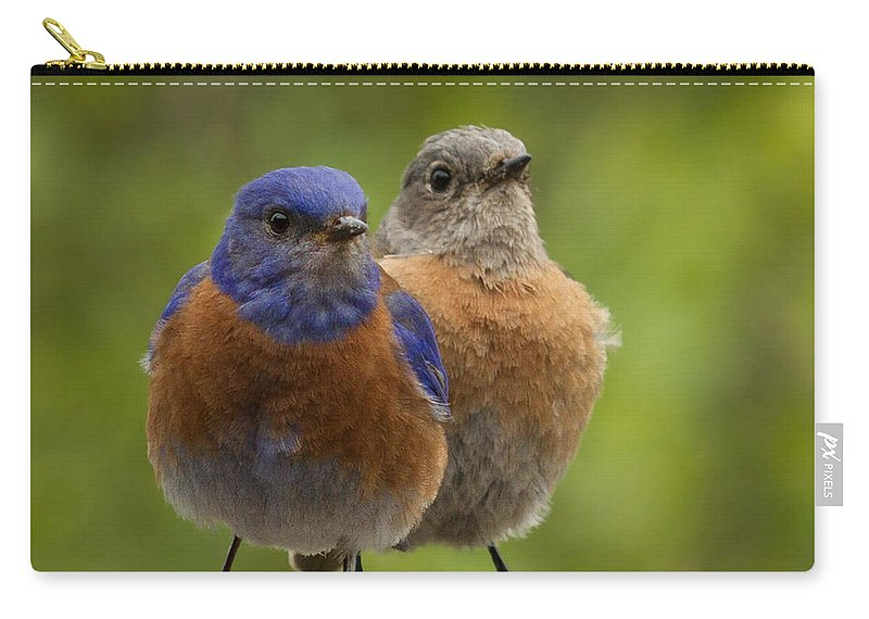 Animals Carry-all Pouch featuring the photograph Pals by Jean Noren