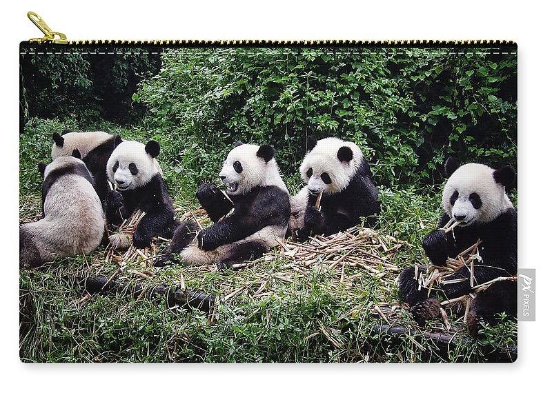 Animal Carry-all Pouch featuring the photograph Pandas In China by Joan Carroll