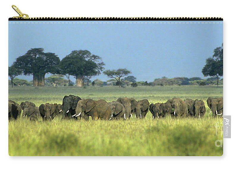 Africa Carry-all Pouch featuring the photograph Panorama African Elephant Herd Endangered Species Tanzania by Dave Welling