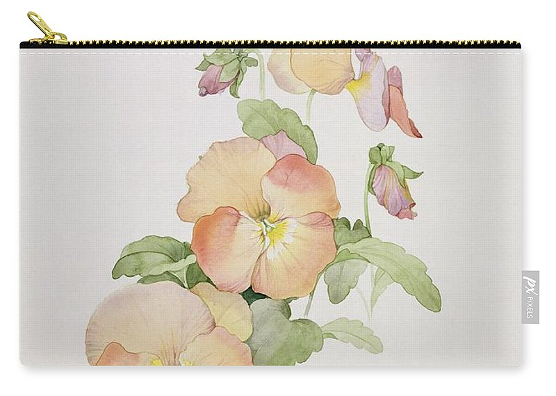 Pansy Hybrids bambini Carry-all Pouch featuring the painting Pansy Hybrids Bambini by Sarah Creswell