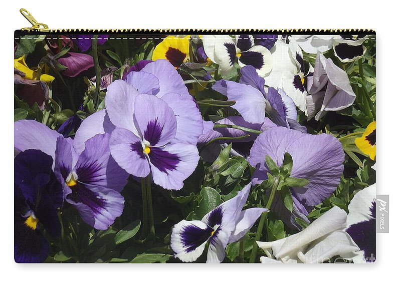Pansy Carry-all Pouch featuring the photograph Pansy by Jennifer Lavigne
