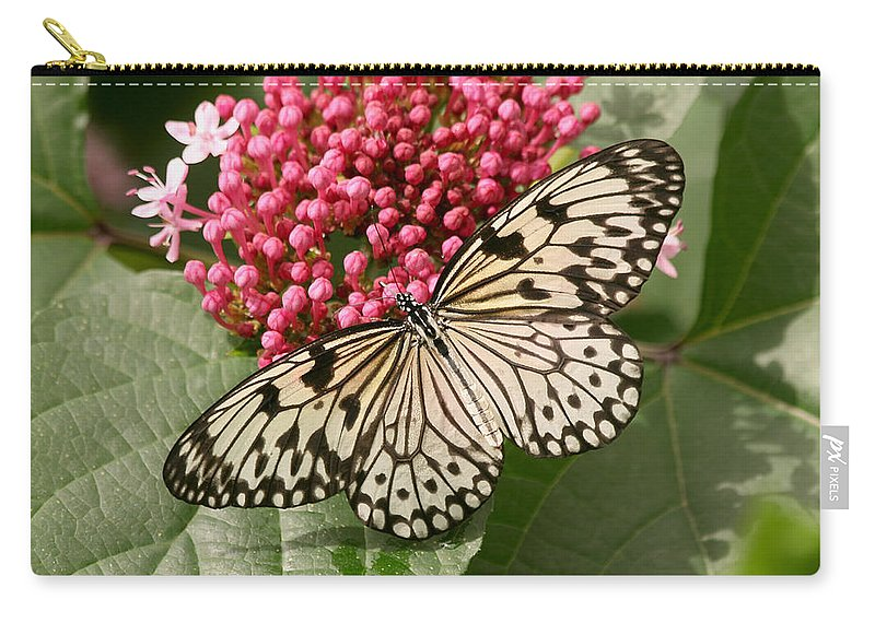 Butterfly Carry-all Pouch featuring the photograph Paper Kite Butterfly by Kim Hojnacki