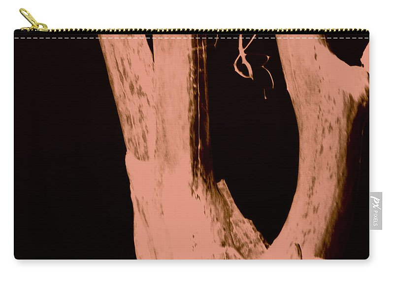 Jamie Lynn Gabrich Carry-all Pouch featuring the photograph Parish In The Night by Jamie Lynn