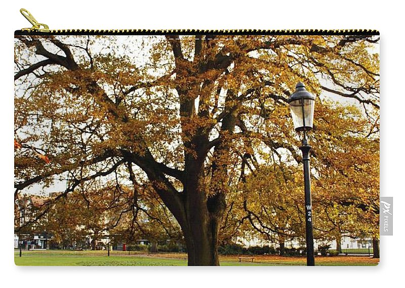 Autumn Woods Carry-all Pouch featuring the photograph Park Life by Terri Waters