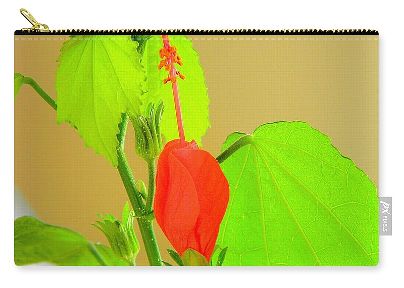 Parlor Carry-all Pouch featuring the photograph Parlor Maple Flower by Owl's View Studio