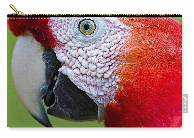 Beak Carry-all Pouch featuring the photograph Parrot 35 by Ingrid Smith-Johnsen