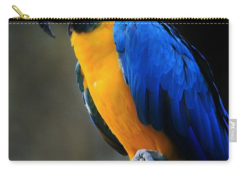 Parrot Carry-all Pouch featuring the photograph Parrot by Tonya Hance
