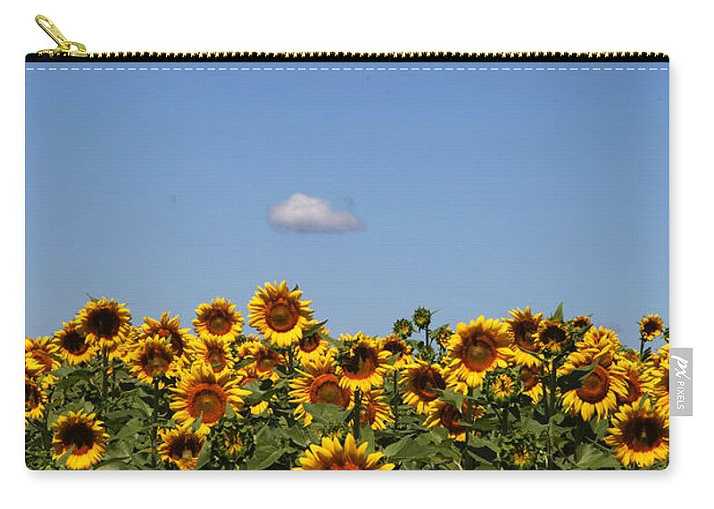 Sunflower Carry-all Pouch featuring the photograph Passing By by Amanda Barcon