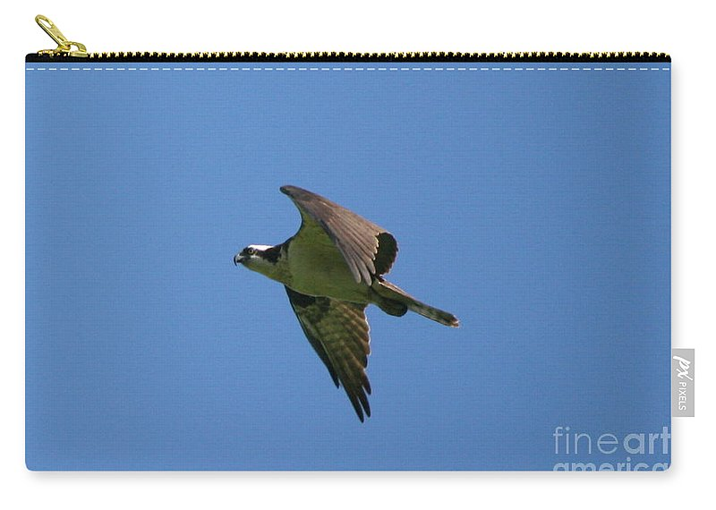 Osprey Art Carry-all Pouch featuring the photograph Passing Osprey by Neal Eslinger