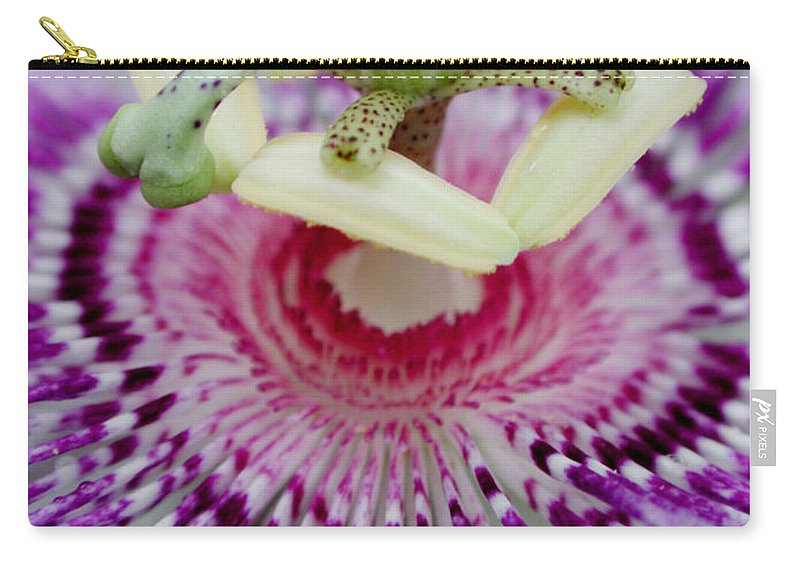 Passion Carry-all Pouch featuring the photograph Passion Flower In Bloom by Susan Bloom