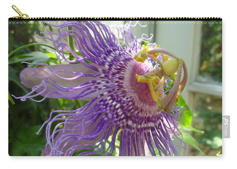 Flower Macro Carry-all Pouch featuring the photograph Passion Flower by Lingfai Leung