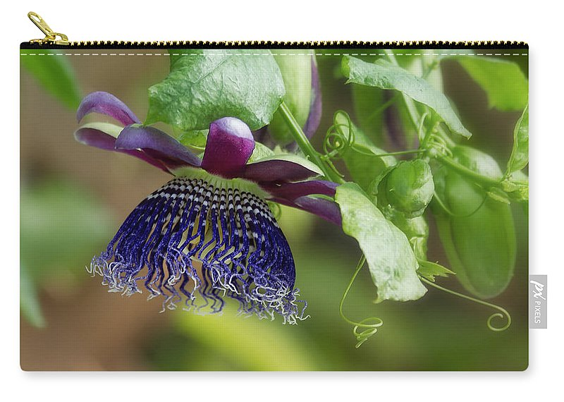 Passion Flower Carry-all Pouch featuring the photograph Passion Flower - Ruby Glow by Kim Hojnacki
