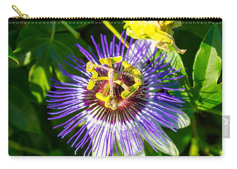 Passion Fruit Flower Carry-all Pouch featuring the photograph Passion Fruit Flower by G Matthew Laughton