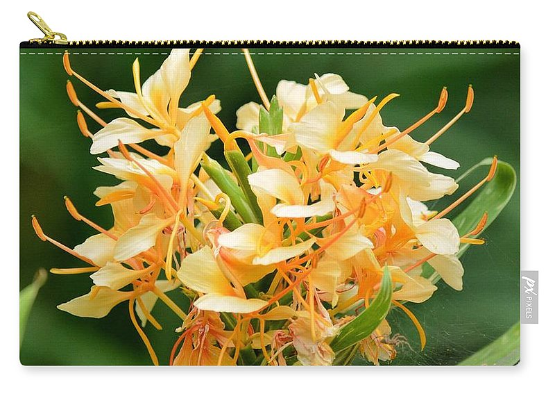 Pastel Peach Petals Carry-all Pouch featuring the photograph Pastel Peach Petals by Maria Urso