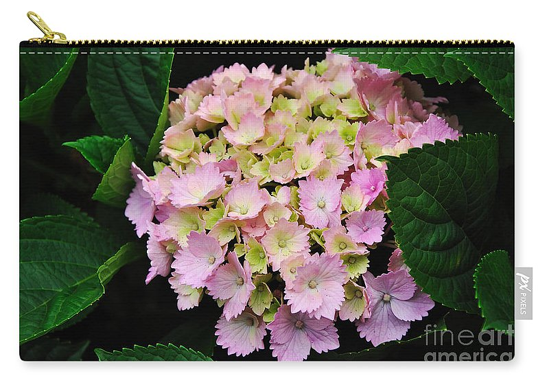 Photography Carry-all Pouch featuring the photograph Pastel Pink Hydrangea by Kaye Menner