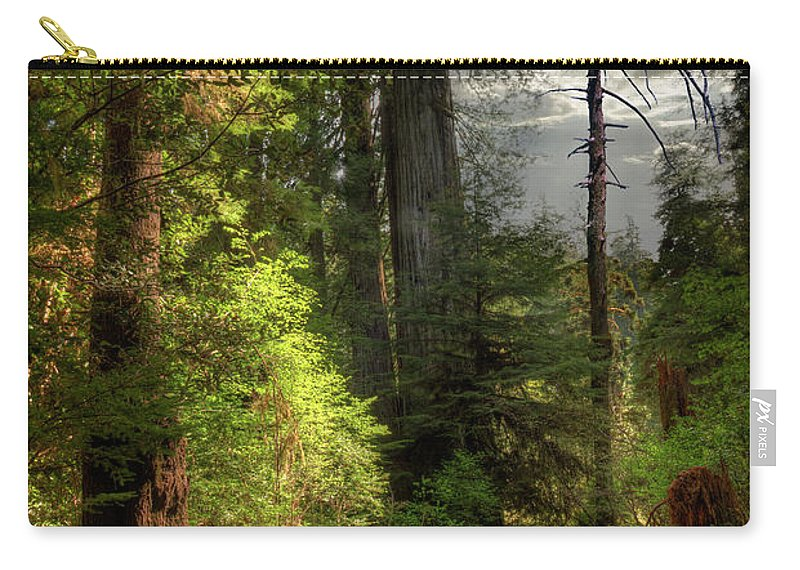 Tranquility Carry-all Pouch featuring the photograph Path Through Redwood Forest by Ed Freeman
